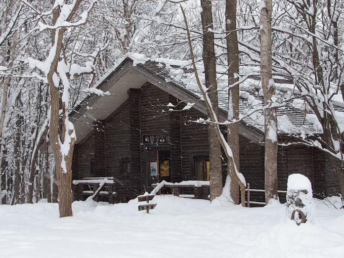 伝統遊具作りに冬の生活体験!
