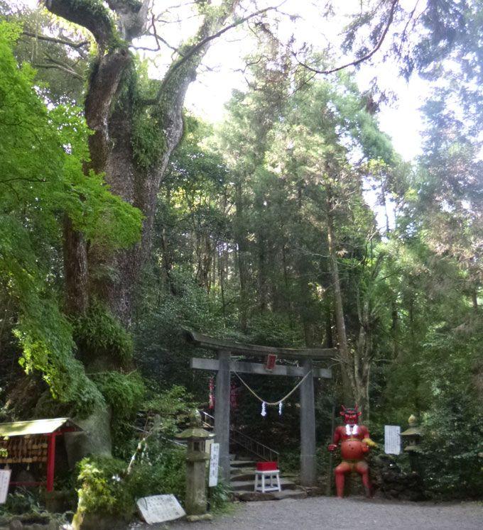 鬼が造った階段?涙で出来た石?宮崎「東霧島神社」は九州随一のパワースポット!