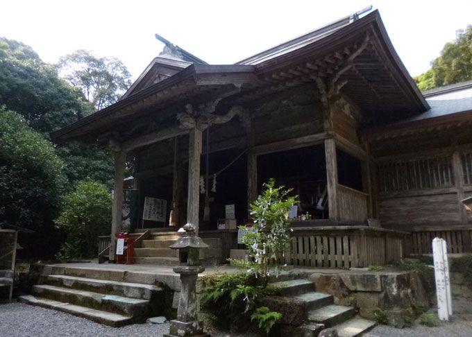 楼門の先には、東霧島神社の拝殿、そして龍王が現れるという大杉