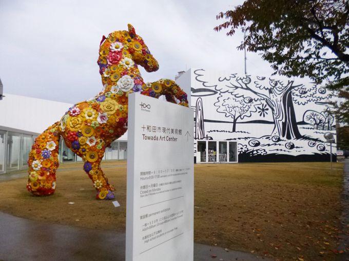 草間彌生・奈良美智が街に飛び出した「十和田市現代美術館」