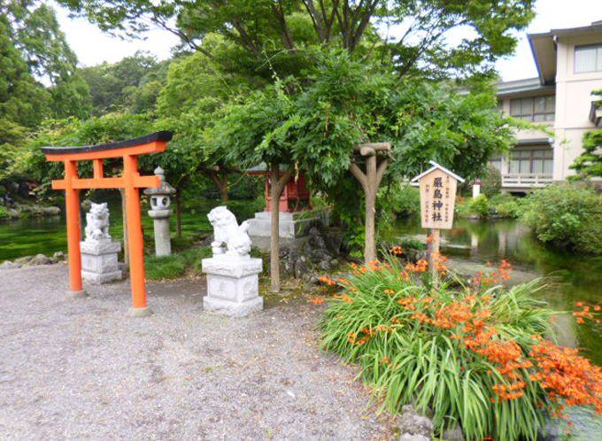 湧玉池の脇には、花や緑に囲まれた厳島神社があります