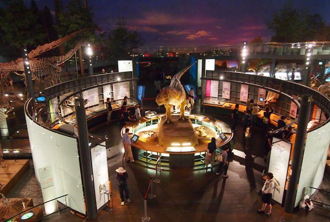 高さ37.5mの無柱空間には42体もの恐竜全身骨格展示、動く復元模型も