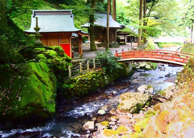 通用門の向かい、永平寺川沿いの稲荷堂の先の道を歩いてみましょう