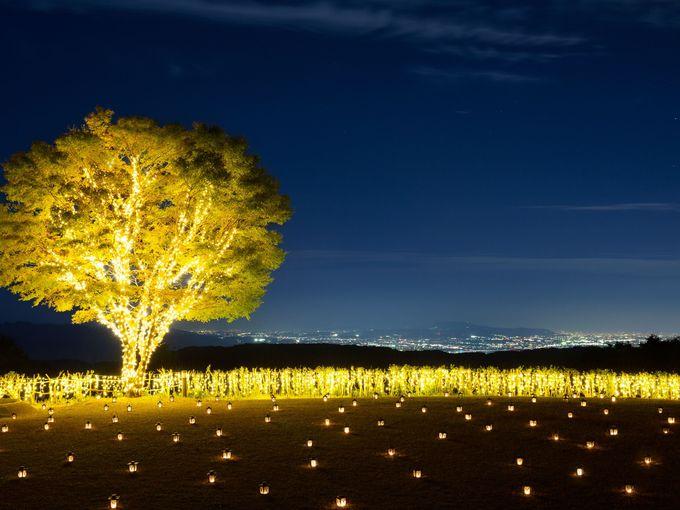 お休み前は夜景ラウンジで、冬限定中庭キャンドルナイトも楽しみ