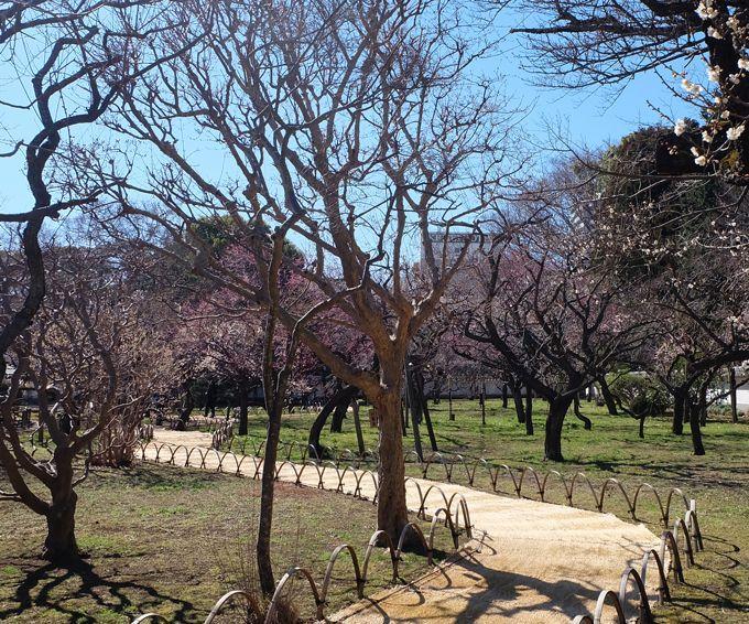 水戸駅徒歩1分、日本遺産に認定された「弘道館」に一番近いホテル!