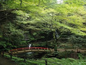 ハイキングのまち・埼玉県越生町で絶対に行きたい絶景5大パワースポットまとめ