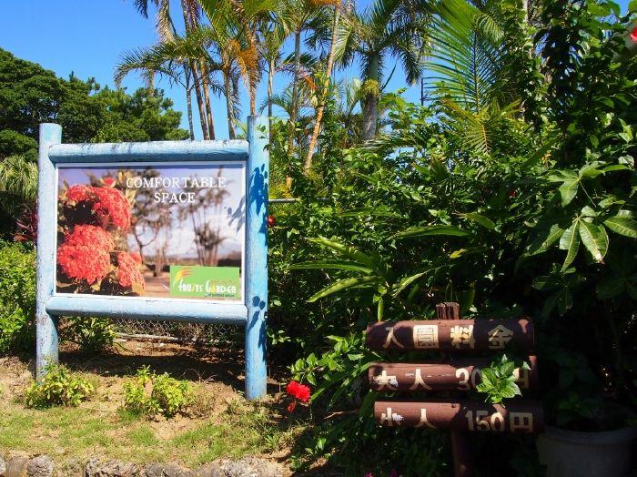大自然の恵みを味わおう!徳之島のおすすめスポット5選