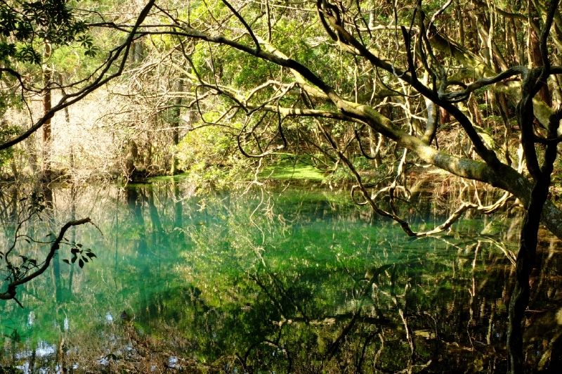 山形・遊佐 鳥海山麓のおいしい湧き水&神秘のパワスポを巡る