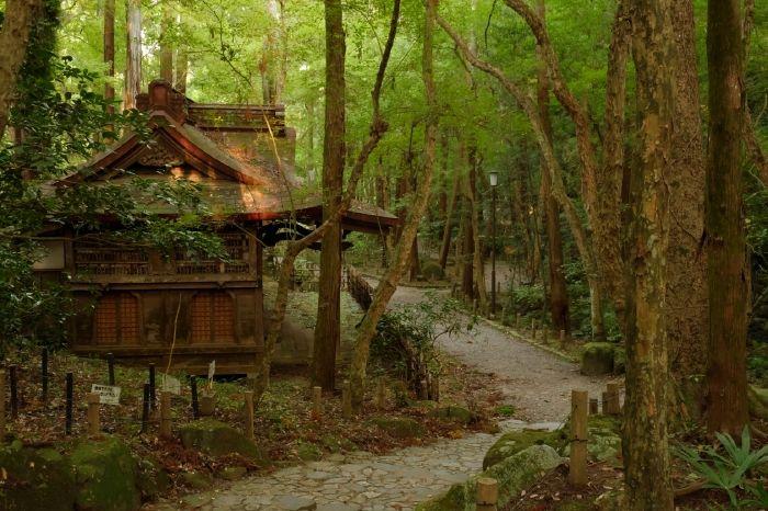 見所は尽きない!広大な成田山公園、美術館も