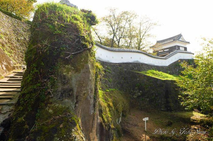 必見!うねる城壁「臼杵城跡」美しい濠ではかわいい鴨もお出迎え