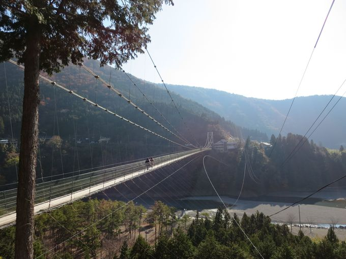 休憩時間で「谷瀬の吊り橋」を渡る。
