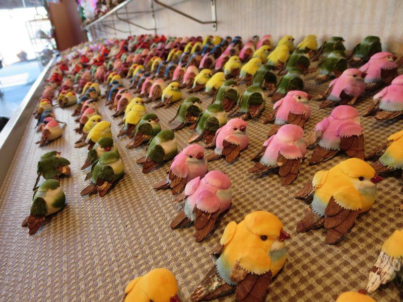 """一羽100円〜!飛騨高山にある小鳥たちの楽園""""ぴーちくぱーく"""""""