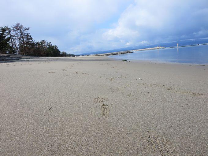 キレイな砂浜。