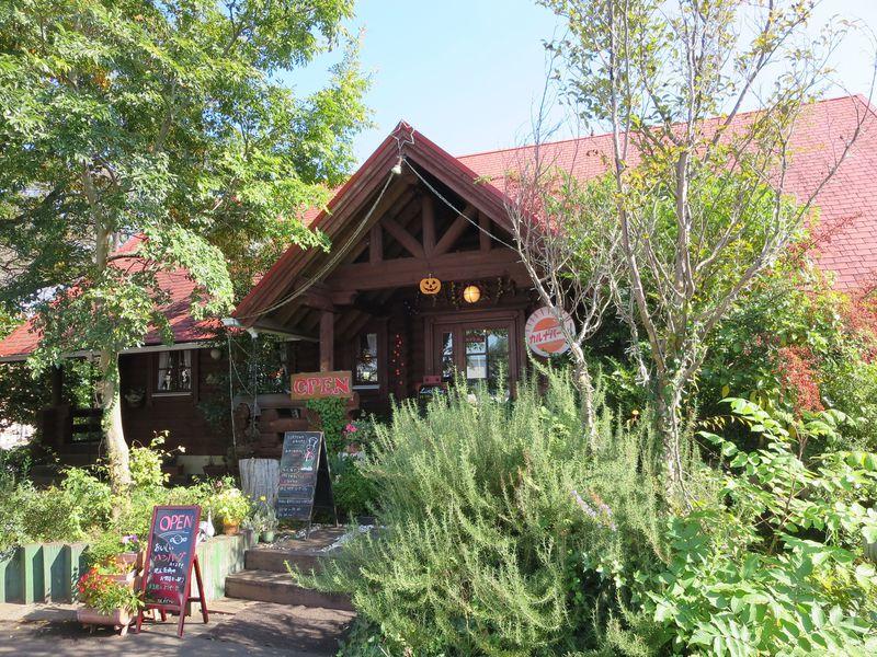 白鳥飛来地「大塚池公園」とレストンラン「カルナバーレ!」は水戸・赤塚駅の二大自然派スポット!