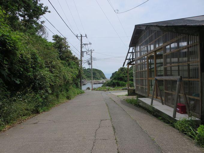 宮川湾への坂道を降りると。