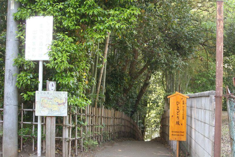サムライの古径「ひよどり坂」を登って千葉佐倉武家屋敷群へ!