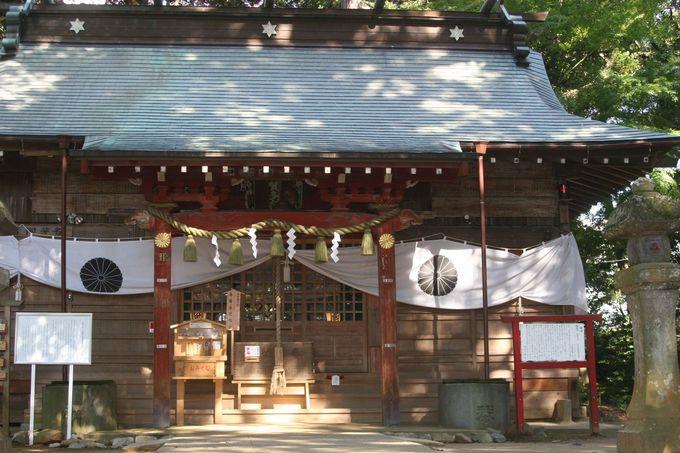 番外編:樹齢1300年を超える大杉を見るなら麻賀多神社へ