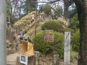 東京・渋谷で気軽に富士登山?富士塚がある「鳩森八幡神社」