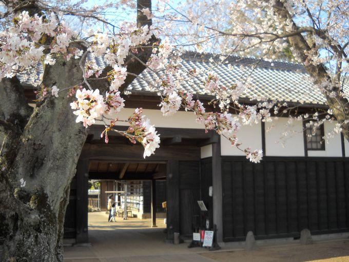 旧吉田家の25mにもおよぶ立派な長屋門