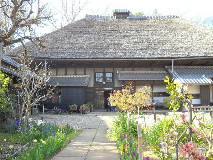 茅葺き屋根の重厚な造りの主屋