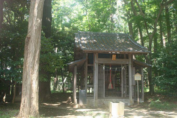 末社のひとつ「子ノ神社」