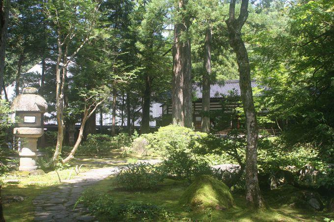 日本庭園から望む宿坊「教算坊」(旧・佐伯宗義邸)