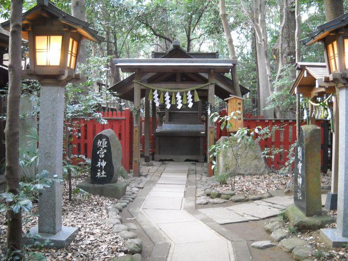 「姫宮神社」は、特に安産の神として信仰されている