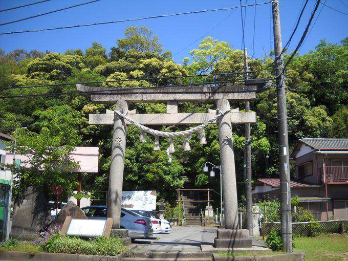 大鳥居をくぐり登りつけば、「大鷲神社」の境内が広がる