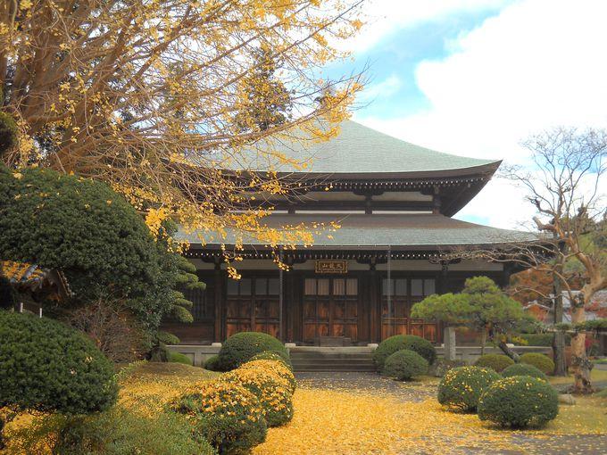 阿弥陀堂形式の泉倉寺