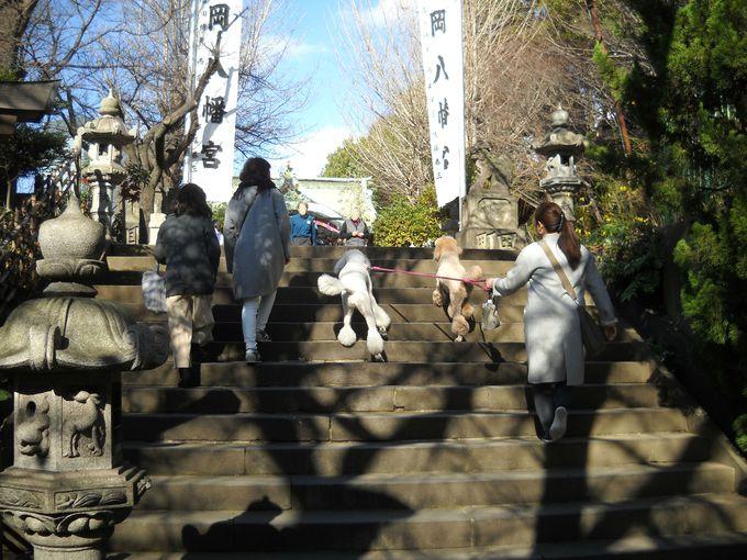 江戸時代から賑わっていた「市谷亀岡八幡宮」