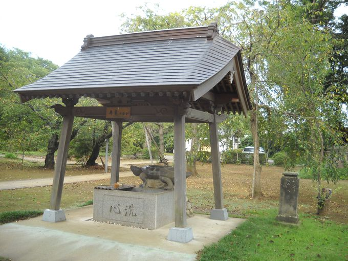 寿亀山天樹院「弘経寺」