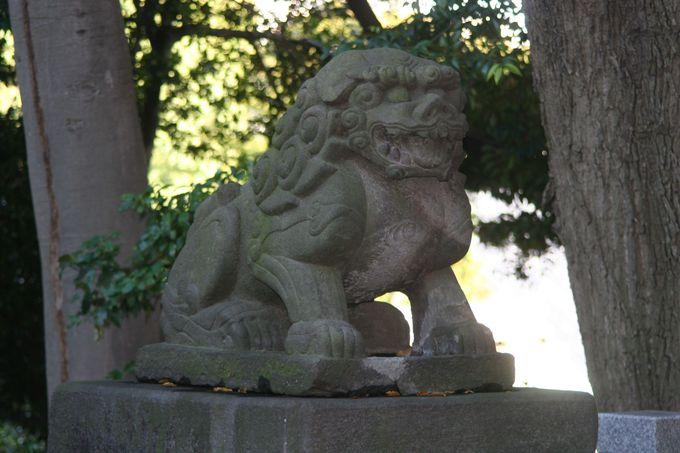 都内最古の狛犬は、満363歳!
