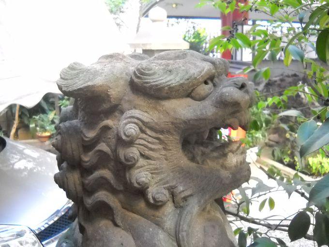 昭和生まれの若き狛犬たちが護りを固めている