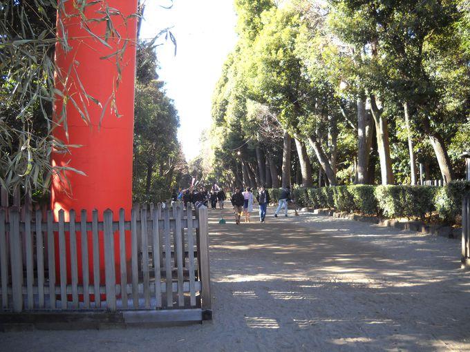 「大灯篭」は「井草八幡宮」のランドマーク