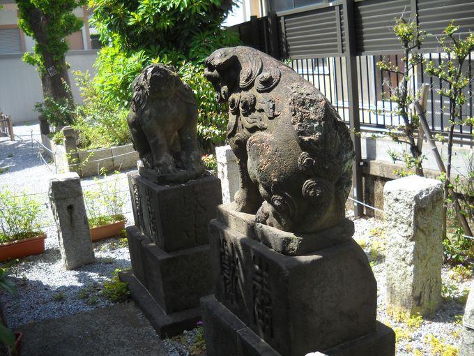 200歳の石造狛犬は、鬼門を護る!