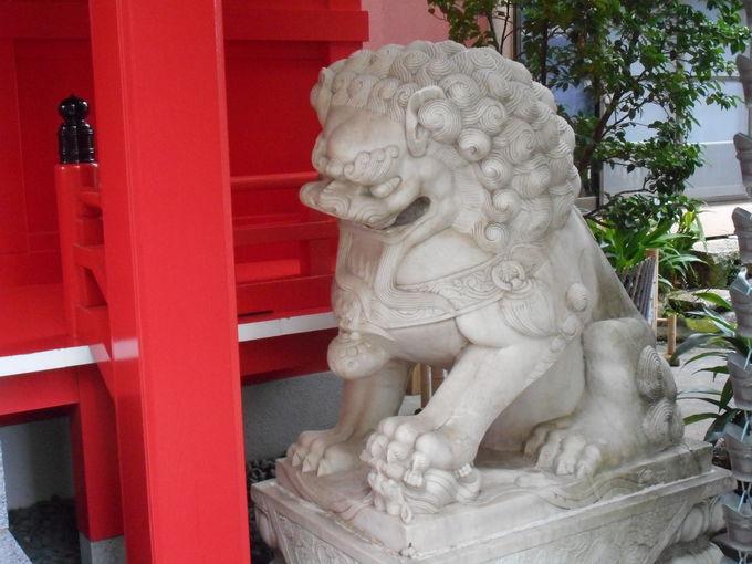 台湾からやって来た「狛犬さん」