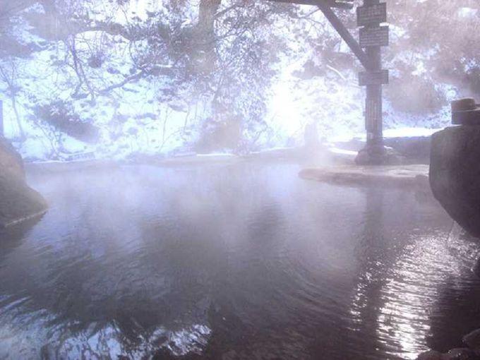 紅葉と森にかこまれる至福の露天風呂