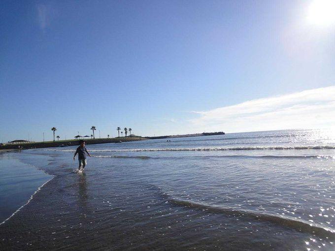 夏の終わりの浜辺