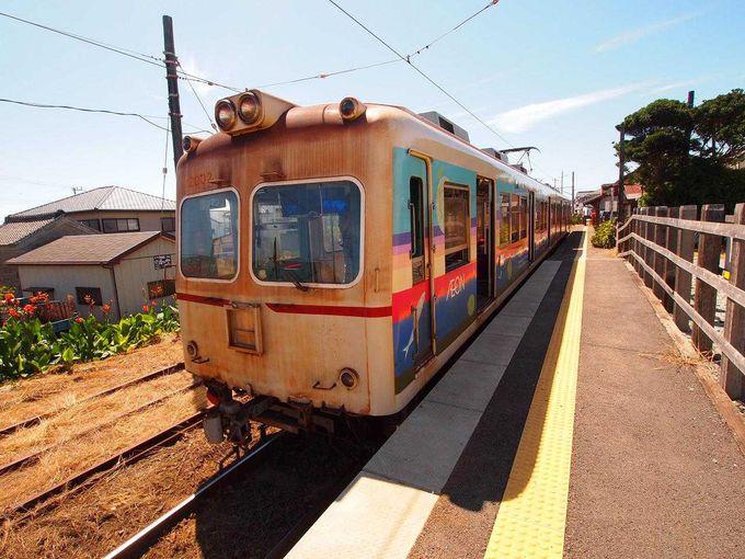 名物「ぬれ煎」が経営危機を救った!醤油の町を走る「銚子電鉄」と港町・銚子観光