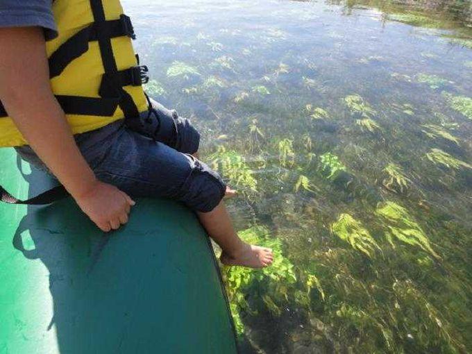 水面に足をつけてみます