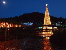 関東三大イルミネーション認定 「光の花の庭」in あしかがフラワーパーク
