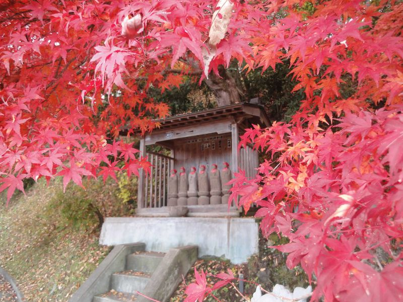 美しい日本の秋を感じる茨城県大子町「もみじ寺」