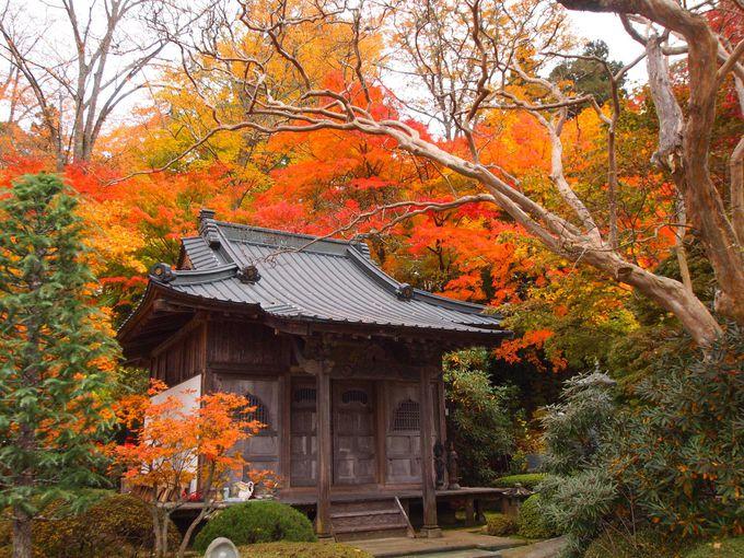 しっとり美しい由緒ある寺
