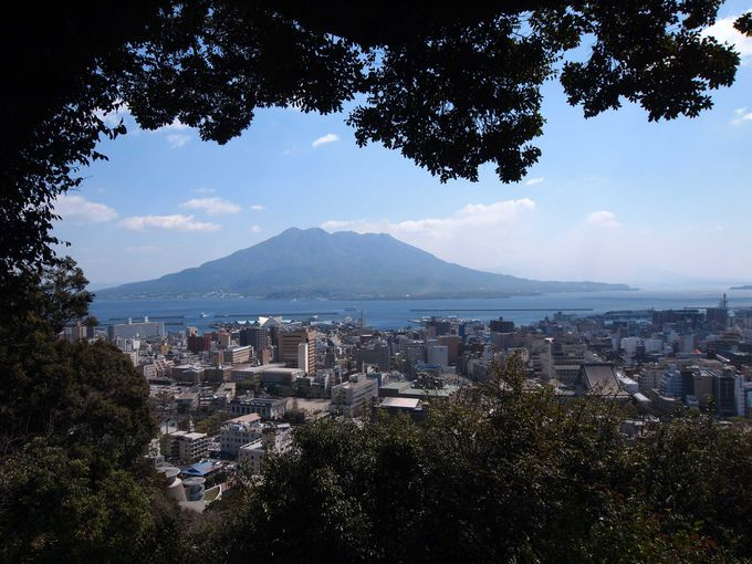 桜島と市街地を展望する「城山」
