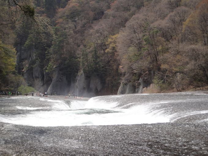 今年2013年は、4月18日に「滝開き」