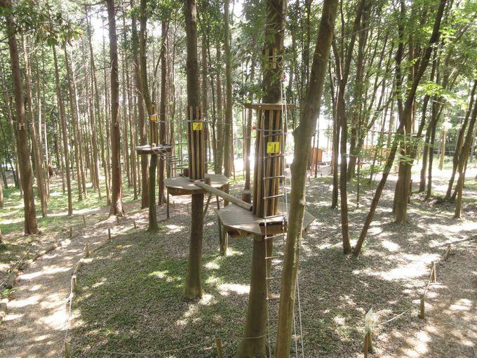 フランス生まれの自然共生型テーマパーク