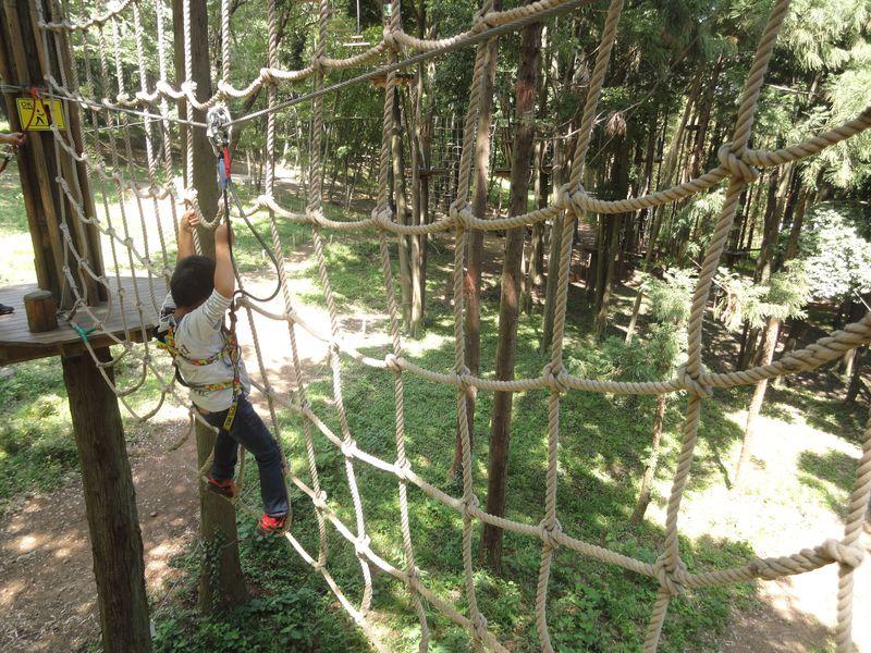気分はターザン!! 森の樹から樹へスリルと感動の空中移動  【栃木県太平山】