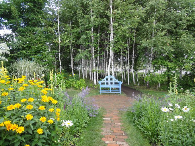 ゆっくり、のんびり歩きたくなる庭