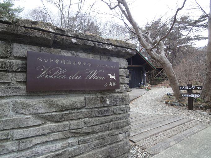 ワンちゃんが温泉に入れるカフェ「Villa du Wan (ヴィラデュワン)」