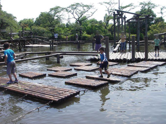 日本最大級の本格アスレチック「清水公園」と、「キッコーマン」ゆかりの地・野田市
